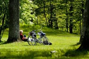 cykel_yananli_450x300