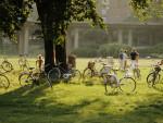 Велосипед и его восприятие обществом