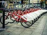 Примеры велократии