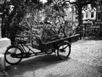 Зачем брать велосипед в прокат?