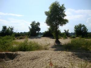Залив Днепра