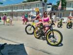 Велократия в Затоке